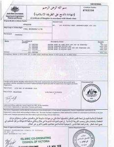 Chứng nhận halal thịt cừu nhập khẩu.